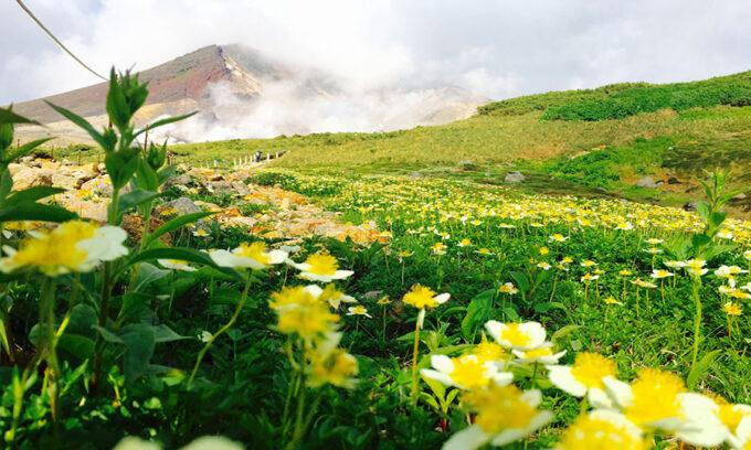 北海道リゾバ