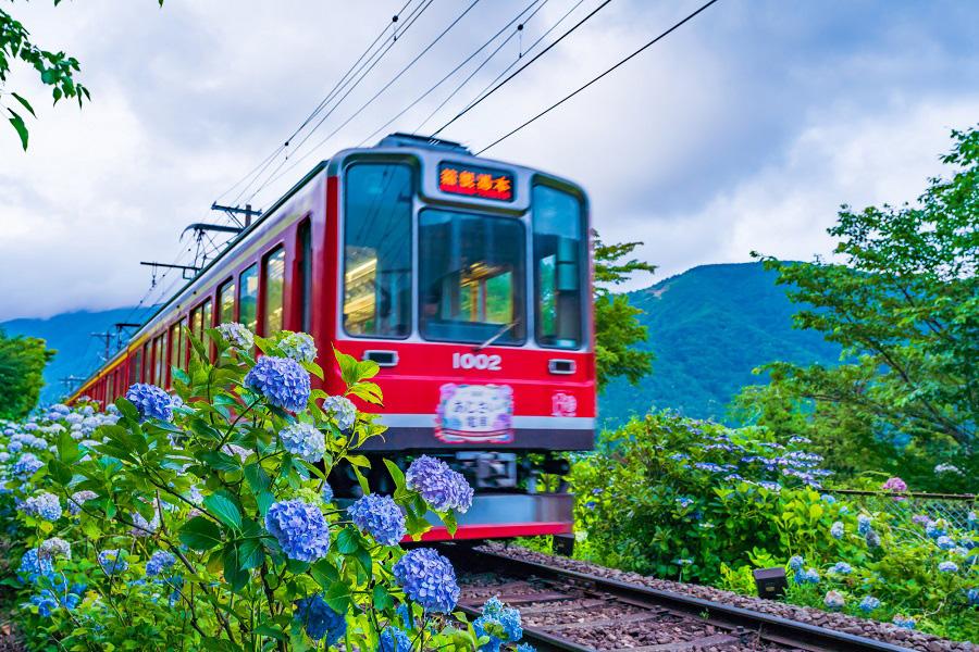 箱根リゾートバイト