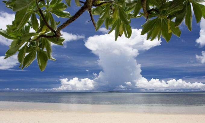 沖縄リゾバ_西表島