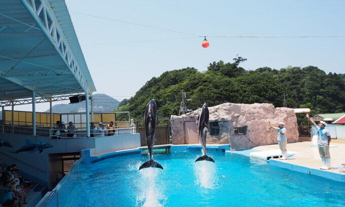 静岡県でリゾートバイト