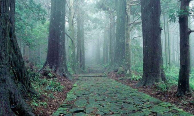 和歌山県でリゾートバイト
