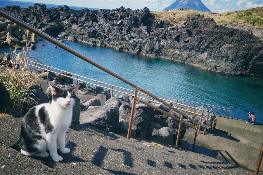 八丈島でリゾートバイト
